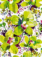 Фотообои на плотной полуглянцевой бумаге для стен 184*254 см из 4 листов:  Яркие цветы орхидеи