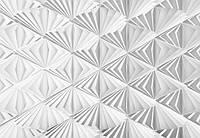 Фотообои на плотной полуглянцевой бумаге для стен 368x254 см. Узоры дельта.  Komar 8-204