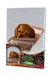 Набор для творчества «Вышивка гладью по номерам на подрамнике Danko Toys» (VGL-02-07)
