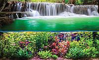 Фотообои 3D природа 368x254 см Подводный мир под водопадом (3354.20057)