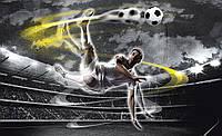 Фотообои 3D спорт 368x254 см Футбол в действии (2000.20116)
