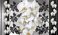 Фотообои 3D цветы 368x254 см Элегантные орхидеи (1286CN)