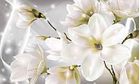 Фотообои 3D цветы (плотная бумага, флизелин, 368х254 см ) Лепестки магнолии  (3508)