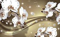 Фотообои флизелиновые 3D цветы 416х254 см : Орхидеи и множество бриллиантов  (2314VEXXXL), фото 1