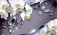 Фотообои 3D цветы (флизелиновые, бумага) 368x254 см Орхидеи сверкающие  CN2159