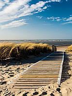 Фотообои 3D природа, море 184х254 см : Дорога ведет на пляж (1021.20689), фото 1