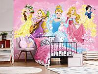 Фотообои детские для девочек 368х254 см Дисней : Команда принцесс (11889CN)