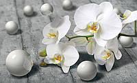 Фотообои 3D цветы флизелиновые 312х219 см Орхидеи и шарики (3013CN)