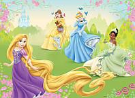Фотообои детские для девочек, Дисней (флизелиновые 312х219 см) Волшебные  принцессы (4-017)