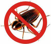 Борьба с тараканами, средство от тараканов