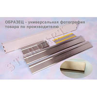 Накладки на пороги Citroen C4 3D  2004- (Nata-Niko)