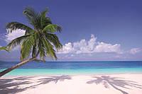 Фотообои флизелиновые 3D Море 375х250 см Пляж и пальма (MS-5-0194)