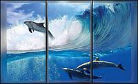 Фотообои флизелиновые 3D Природа, море 368x254 см Вид с окна на дельфинов  496CNVEXXXL