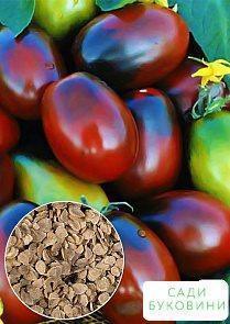 На развес Томат 'Сливка шоколадная' ТМ 'Весна' цена за 1г