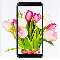 Мобильный телефон ASUS ZenFone Max Pro (M1) ZB602KL 3/32 GB Black (ZB602KL-4A144WW)