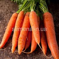 Морква Каротан 250 г.