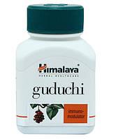 Гудучи, Guduchi Himalaya, 60 капсул, для иммунитета,