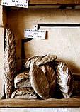 Силоси склопластикові для міні пекарні 40 т INTECH, фото 5