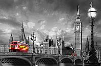 Фотообои: Автобус на мосту, 175х115 см, фото 1