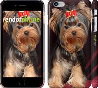 "Чехол на iPhone 6 Plus Йоркширский терьер ""929c-48"""