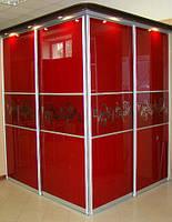Шкаф купе стекло Лакобель, с аэрографией