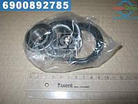 ⭐⭐⭐⭐⭐ Ремкомплект поворотного кулака NISSAN PRIMERA(P10,P11) 90- (Пр-во FEBEST) NOS-001