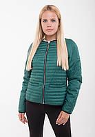 Куртка демисезонная Nuylook №55, (3цв), демисезонная женская куртка, короткая куртка осень, весна