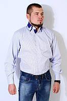 Рубашка мужская белая в синюю полоску на рост 176-182 Kongres V-923-1