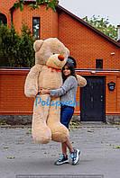 Великий плюшевий ведмедик Рафаель 180 см мокко