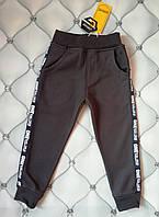 Теплые спортивные штаны мальчику Grace, р. 104, 110