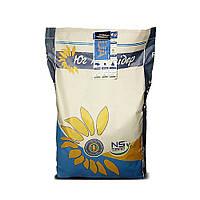 НС-Х-6045 насіння соняшника