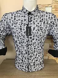 Батальная рубашка длинный рукав Paul Smith  флок