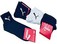 Спортивные носки хлопок в стиле PUMA 12 шт 40-45