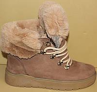 Ботинки женские зимние нубук на платформе от производителя модель АС13-1, фото 1