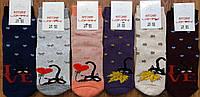 """Дитячі махрові шкарпетки""""LOMANI, Житомир"""" Котики, фото 1"""