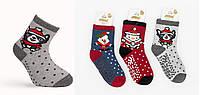 Махровые носки с тормозами 1-2, 3-4, 5-6 лет, ТМ Katamino Турция оптом, фото 1