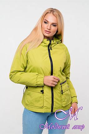 Женская демисезонная куртка большого размера (р. 42-56) арт. Джуанна фисташка, фото 2