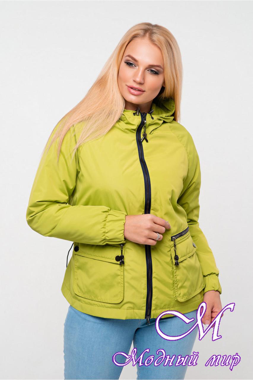 Женская демисезонная куртка большого размера (р. 42-56) арт. Джуанна фисташка