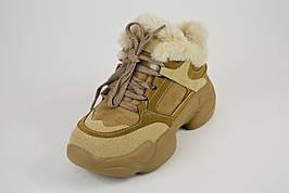 Кроссовки зимние бежевые Loris Bottega 1800