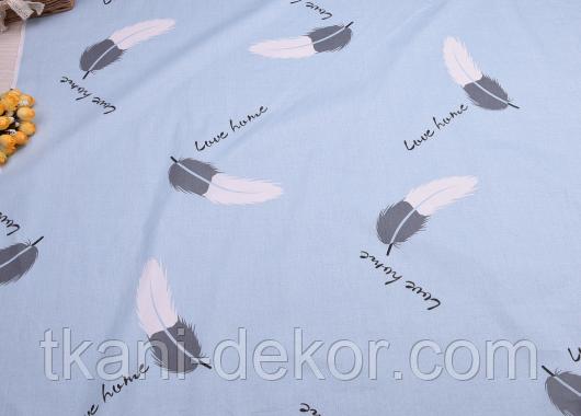 Сатин (хлопковая ткань) перышки бело-серые с надписями на голубом
