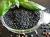 Кунжут чорний, 1 кг ХоРеКа, фото 2