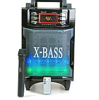 Портативная колонка с радиомикрофоном RX-2900BT (USB/Bluetooth/FM/аккумулятор)