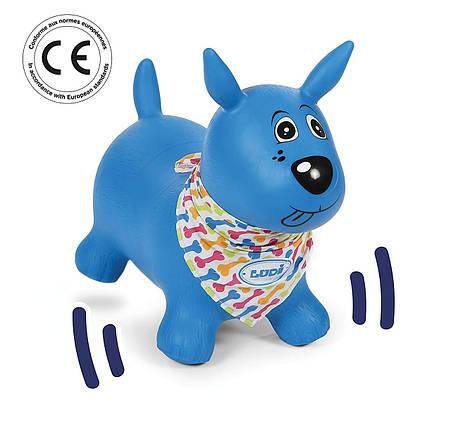Игрушка детская собака - LUDI 2776, фото 2