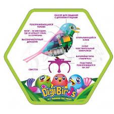 Интерактивная птичка DigiBirds - АТТРАКЦИОН КРИСТАЛЛА домик, качели, свисток, фото 3