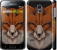 "Чехол на Samsung Galaxy S5 mini G800H Лис ""2824c-44"""