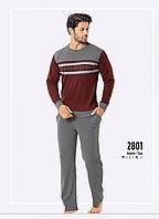 Пижама мужская зимняя интерлок Falkom 2801