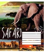 Зошит учнівська 12 аркушів, лінія, тварини, малюнки в асортименті