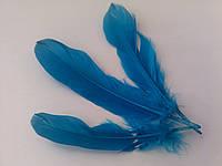 Перо декоративное Голубое 14 - 20 см