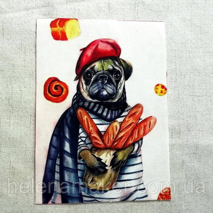 МОПС  Рисунок на ткани 15*20 см, аппликация, нашивка, тканевая вставка, ткань для творчества и скрапбукинга