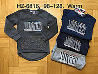 Реглан утепленный для мальчиков оптом, Active Sports, 98-128 см,  № HZ-6816, фото 1